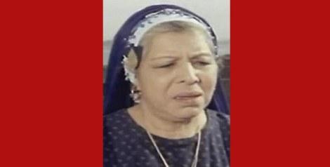 زوزو حمدي الحكيم